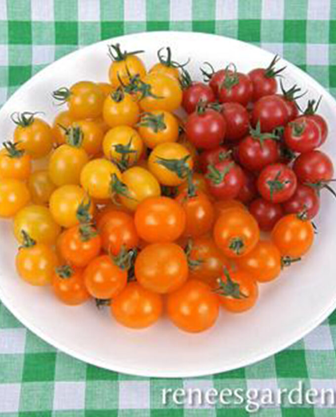 Tomatoes Cherry Garden Candy
