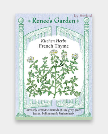 thyme_french1